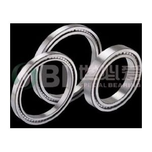 Double Row Full Complement  Roller Bearing