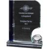 Crystal Trophy P7250003