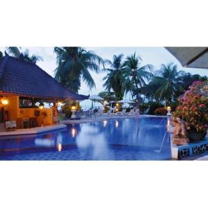 4D3N Bali Honeymoon Package + Dolphin Tour