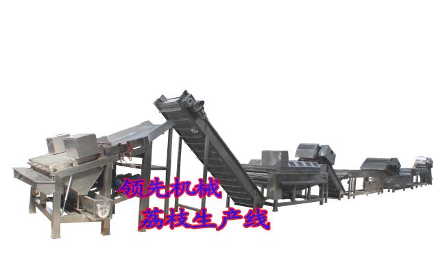 哪里的荔枝前处理设备质量好-新乡领先机械
