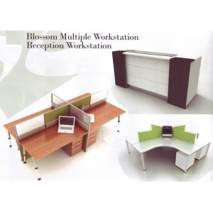 Blossom Multiple Workstation Reception Workstation