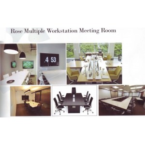 Rose Multiple Workstation Meeting Room